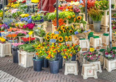Uniworld Dutch Delight